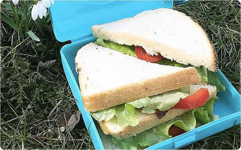 Fiambrera sandwich CARL OSCAR