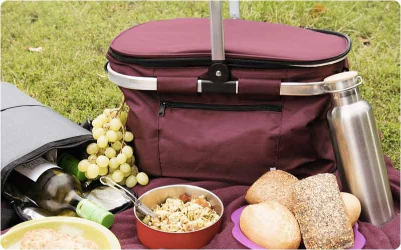 nevera para picnic